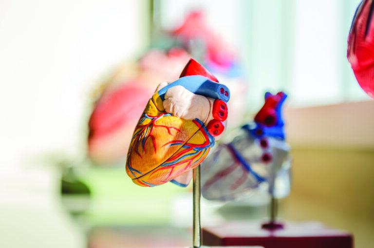 To ma być nowoczesny ośrodek, który zaoferuje pacjentom wszelkie dostępne procedury